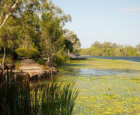 La Ross River en Australie